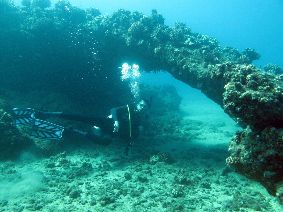 Matt underwater arch