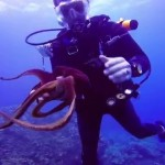 Finding Octopus in Maui