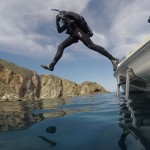Catalina Island dive and fish video
